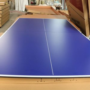 Blue Ping Pong Tables