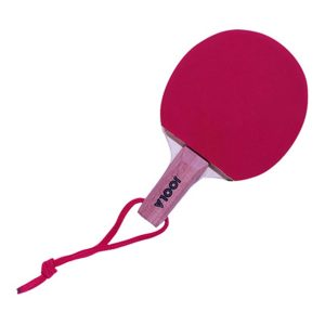 Joola Mini Ping Pong Tables