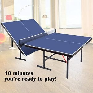 Ping Pong Tables Under 300