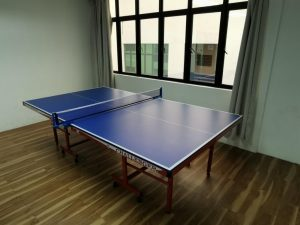 Prince Challenger Ping Pong Tables