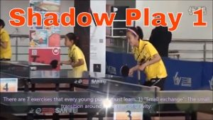 Shadow Ping Pong Tables
